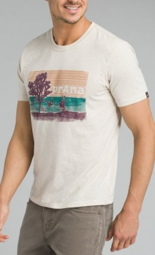 prAna Aggler T - Heather