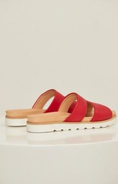 Lanius Pantolette - Red