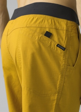 PrAna Moaby Shorts - Lichen